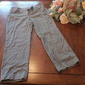 Ann Taylor Julie style pants
